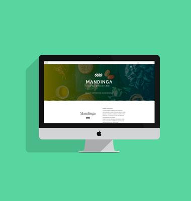HolyMonkey - Diseño Digital - Videos Corporativos - Fotografía Corporativa Mandinga