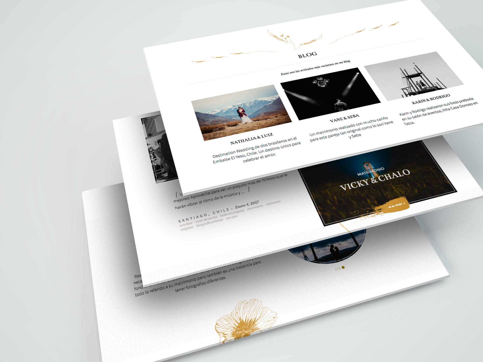 Sitio Web Autoadministrable para Dantzoff, Holymonkey, Agencia Creativa Digital, Santiago, Chile.