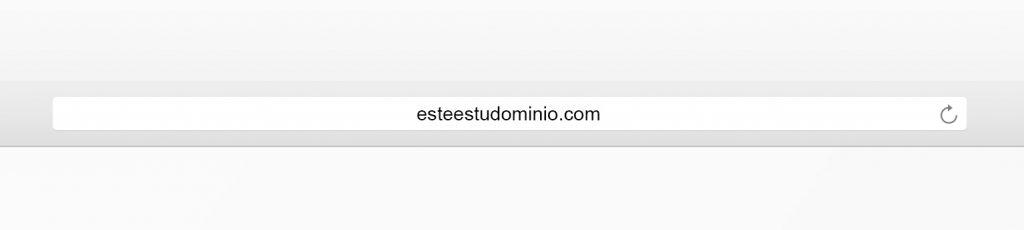 Este es tu dominio - HolyMonkey - SEO para principiantes